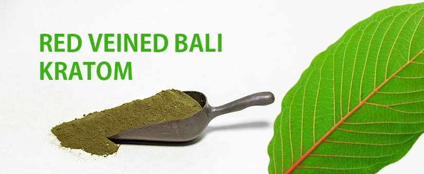 PEOPLE-ARE-CRAVING-INTO-RED-VEINED-BALI-KRATOM-AND-LETS-FIND-OUT-WHY