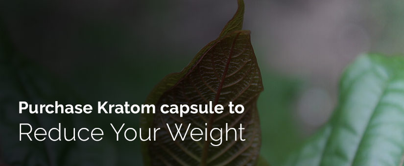 Purchase Kratom capsule to reduce your weight