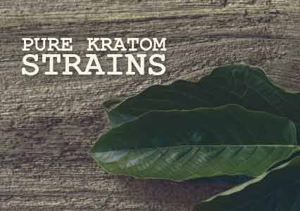 Pure Kratom strains available